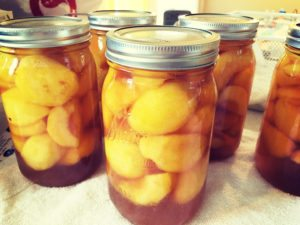 Can Your Peaches With Honey for a More Natural Sweetness