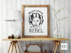 Free Princess Leia Inspired Cut Files