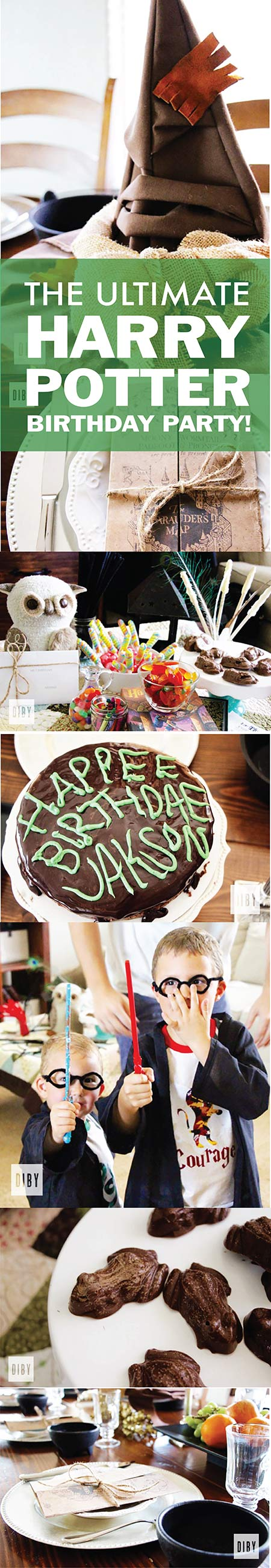 The Ultimate DIY Harry Potter Birthday Party!