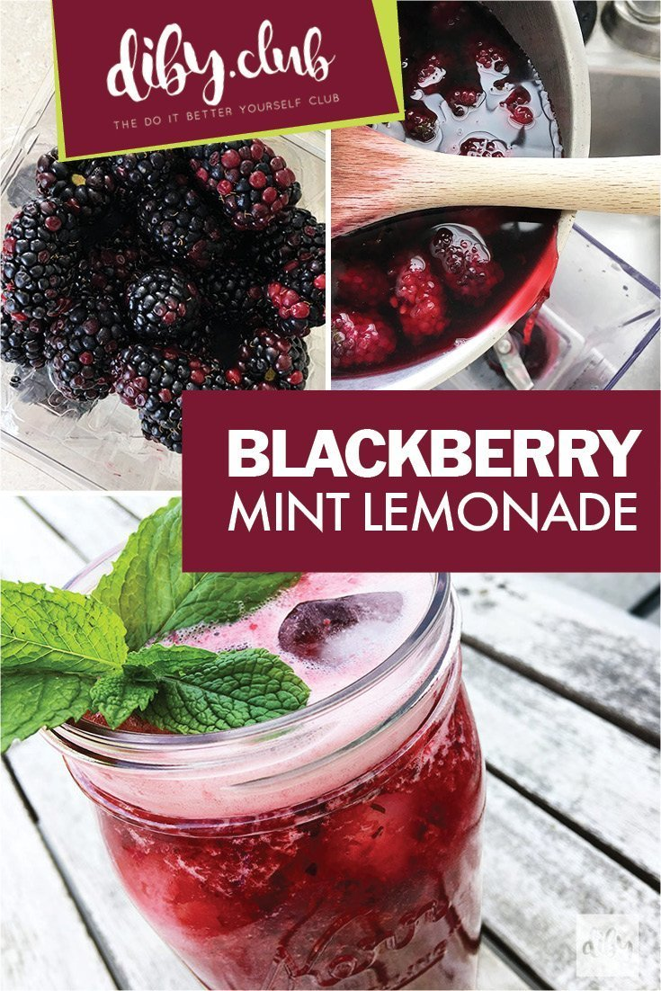 Hold on to the Sweet Taste of Summer with This Fresh, Tart and Sweet Blackberry Mint Lemonade Recipe. A Perfect Drink for Any Meal or a Treat All on Its Own